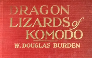 Burden, Dragon Lizards of Komodo